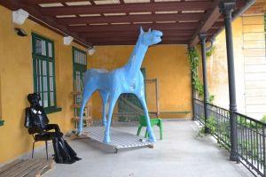 Marco Cavallo